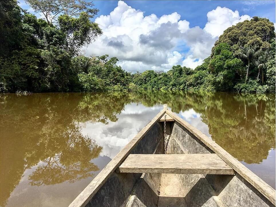 Sailing in search of the pink dolphin in the Amazon