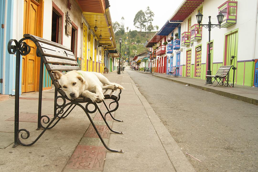 Pueblos de Colombia en el Eje cafetero