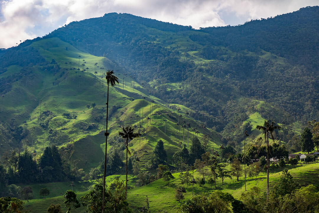 Valle del Cócora