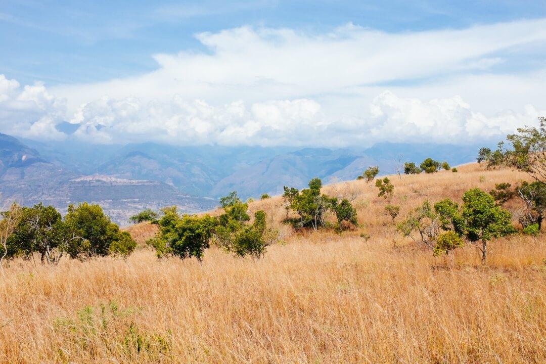 Hiking along the Camino Real