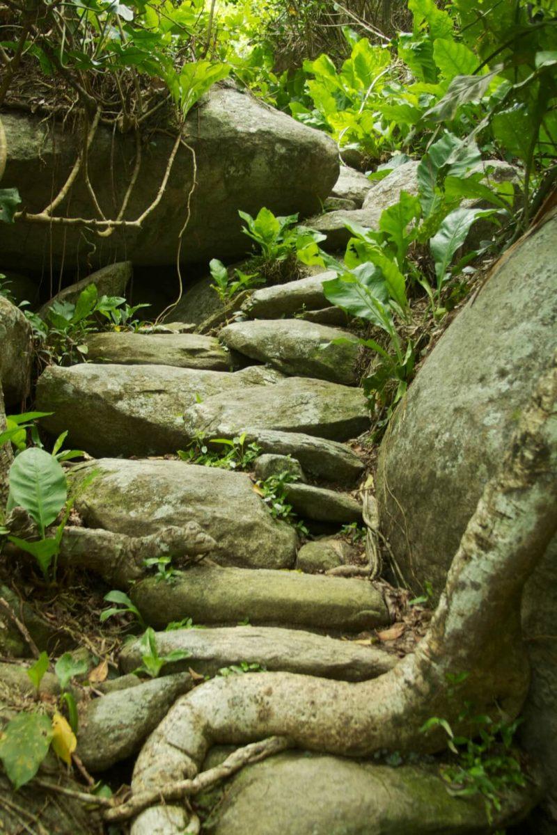 Camino rocoso en el parque Tayrona
