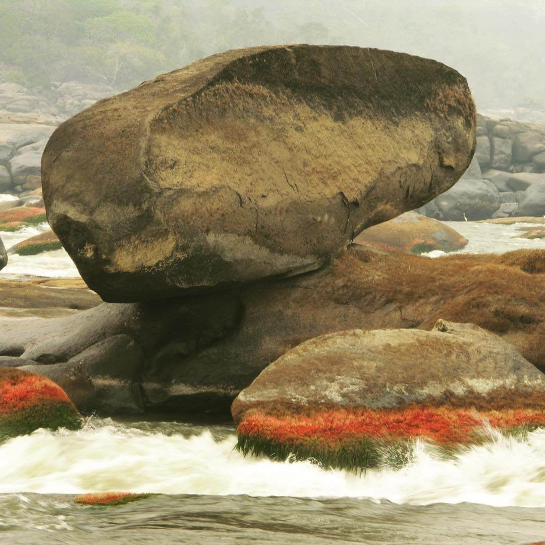 Rocks on the Orinoco River