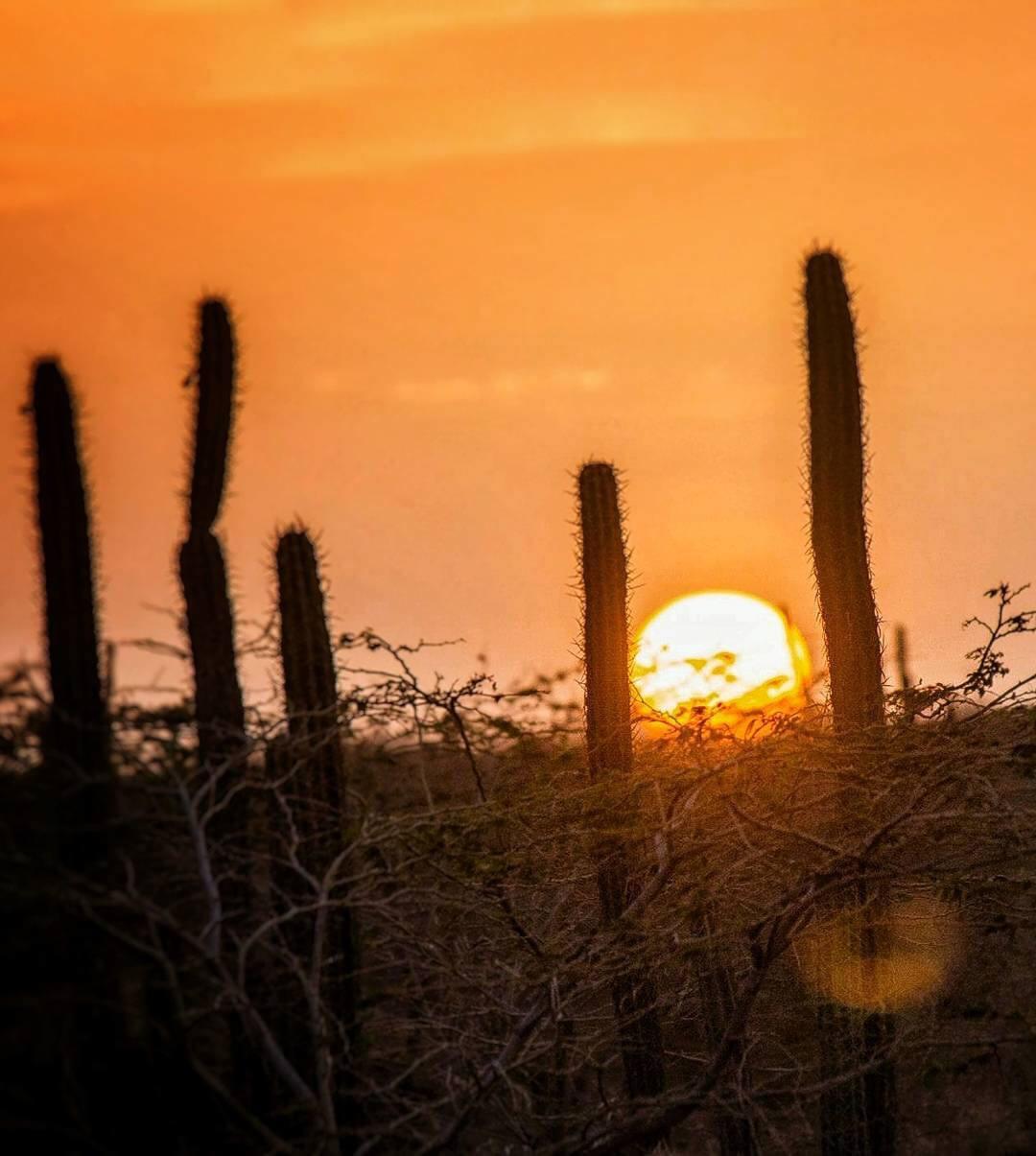 Atardecer en La Guajira