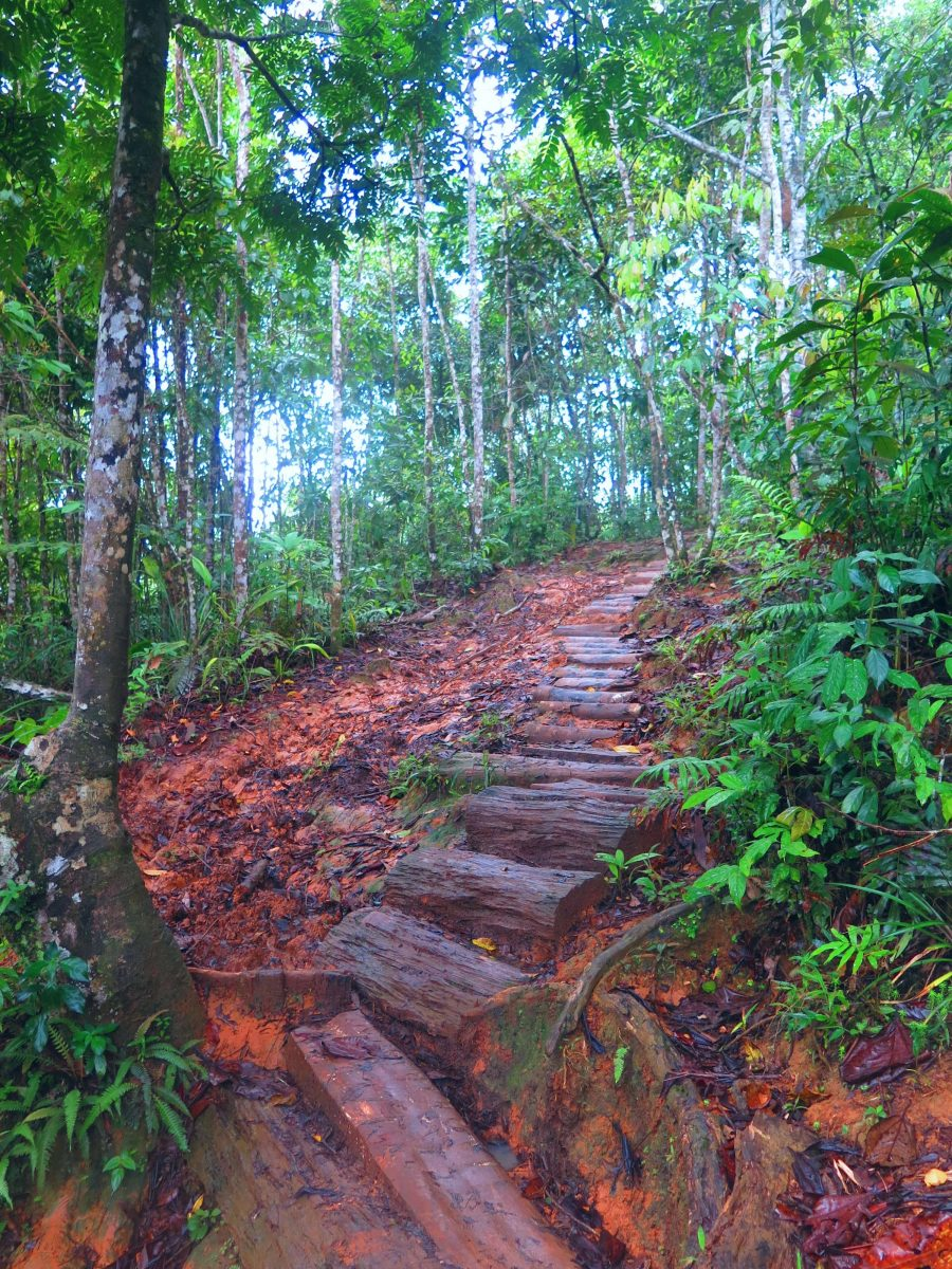 Path to the End of the World Waterfall Putumayo