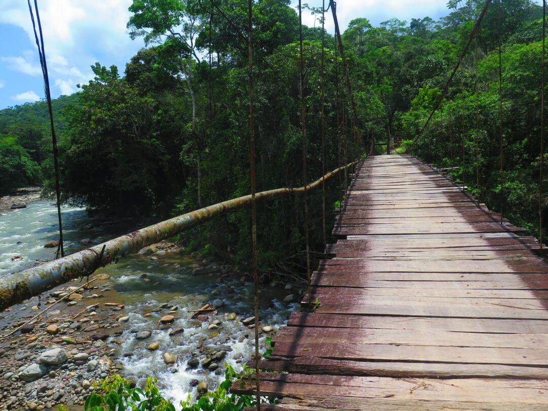 Suspension bridge over Putumayo river