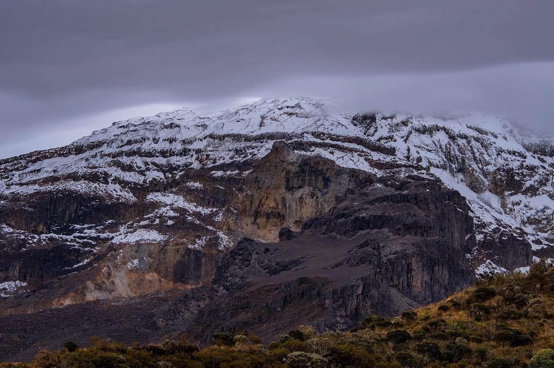 Parches en el PNN Los Nevados