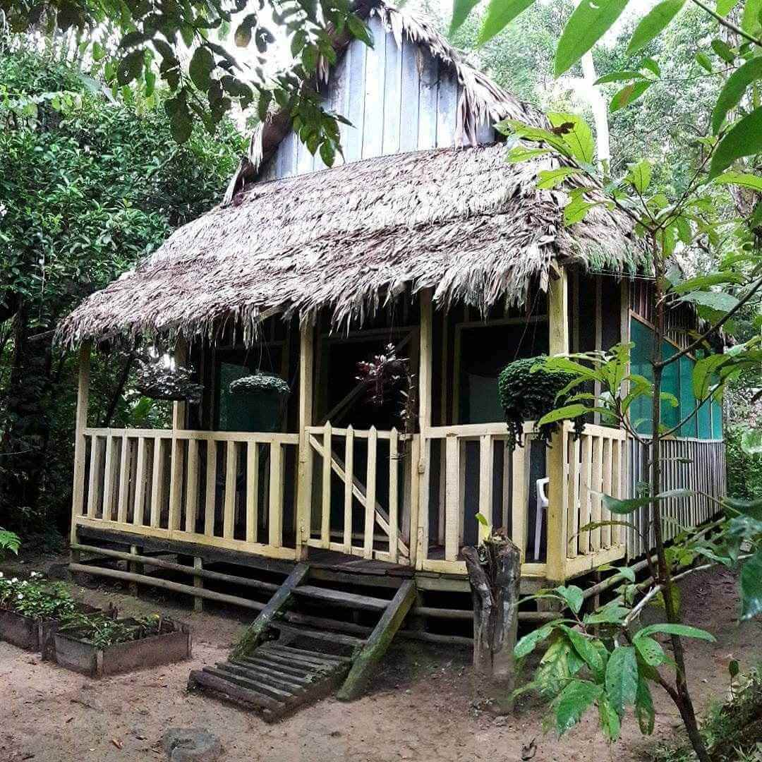 Omshanty Jungle Lodge