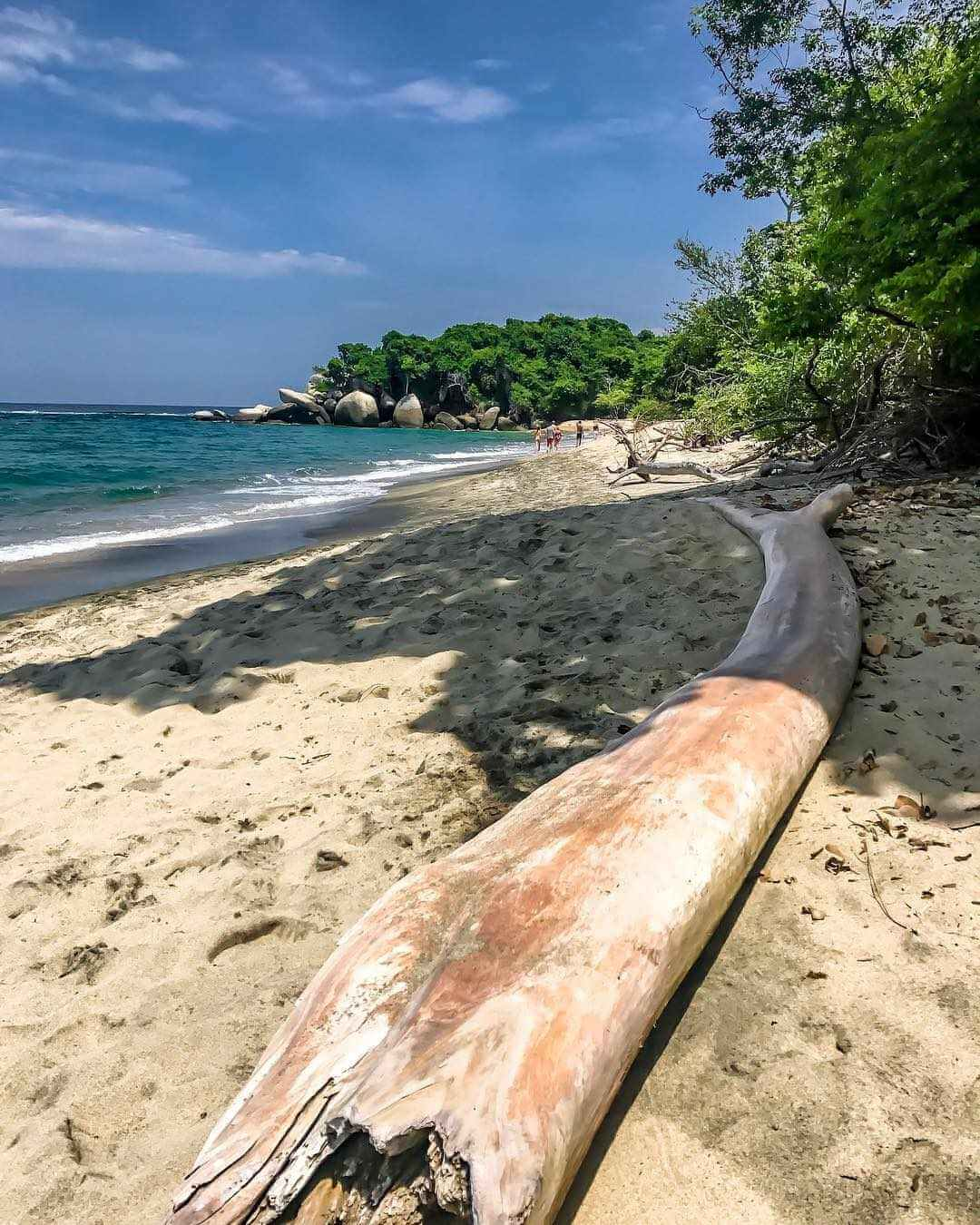 Playa solitaria del parque Tayrona