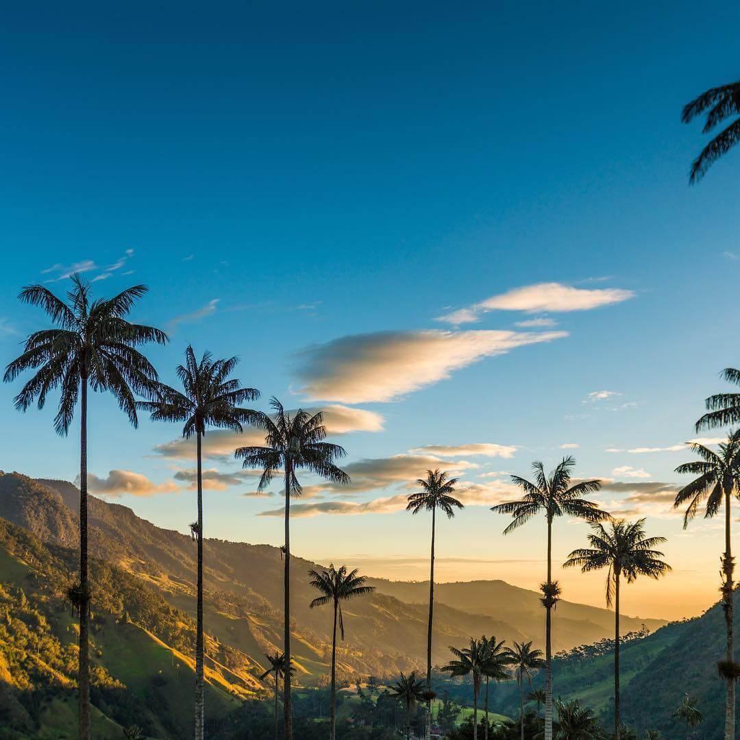 Caminata al mirador del Valle del Cocora