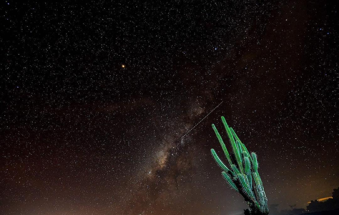 Rain of stars desert of the Tatacoa