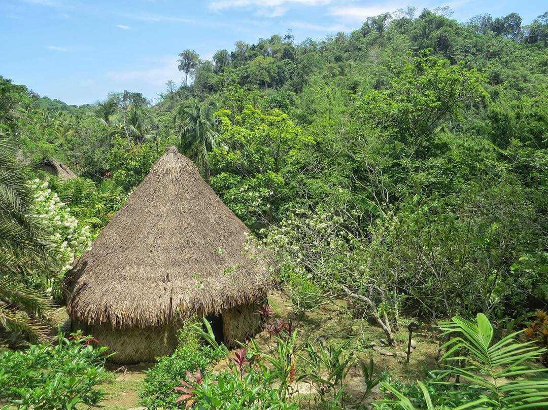Reserva Taironaka Santa Marta