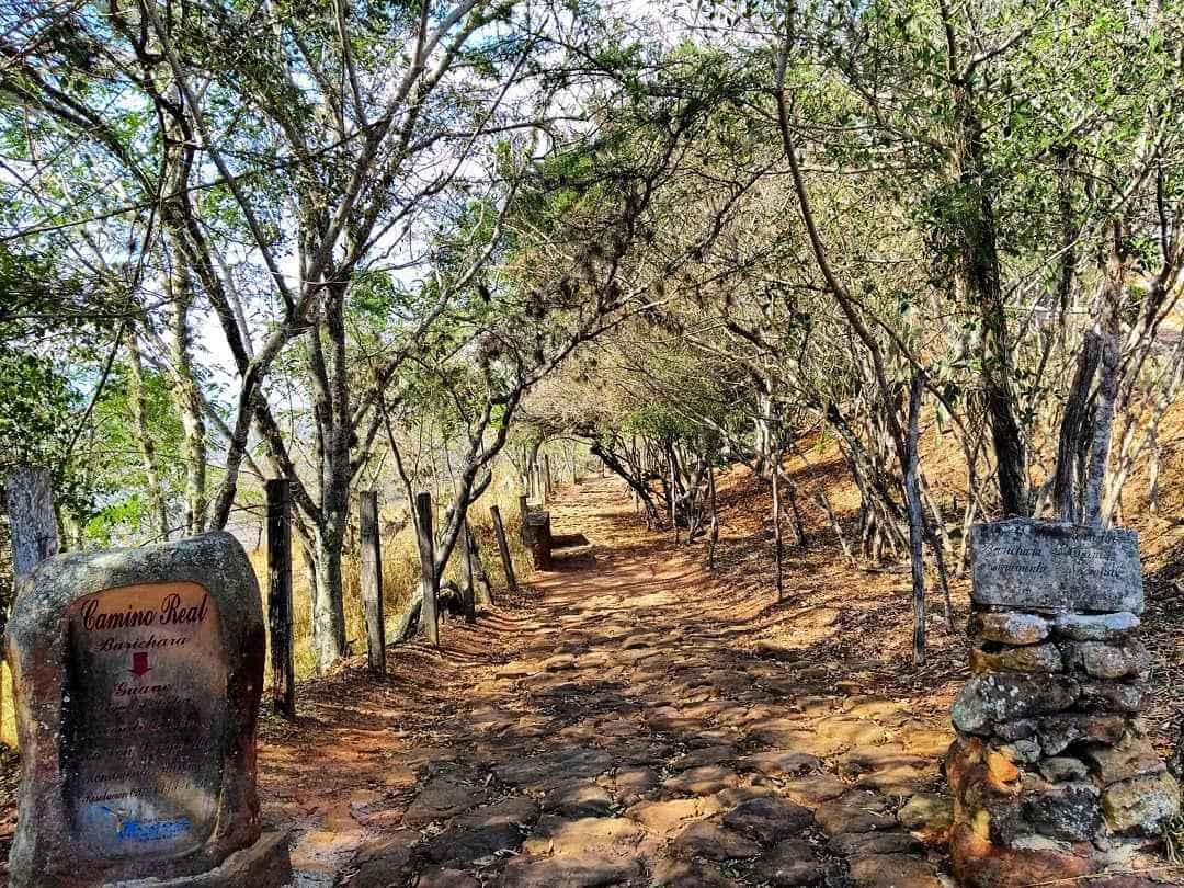 Caminatas ecológicas en Colombia
