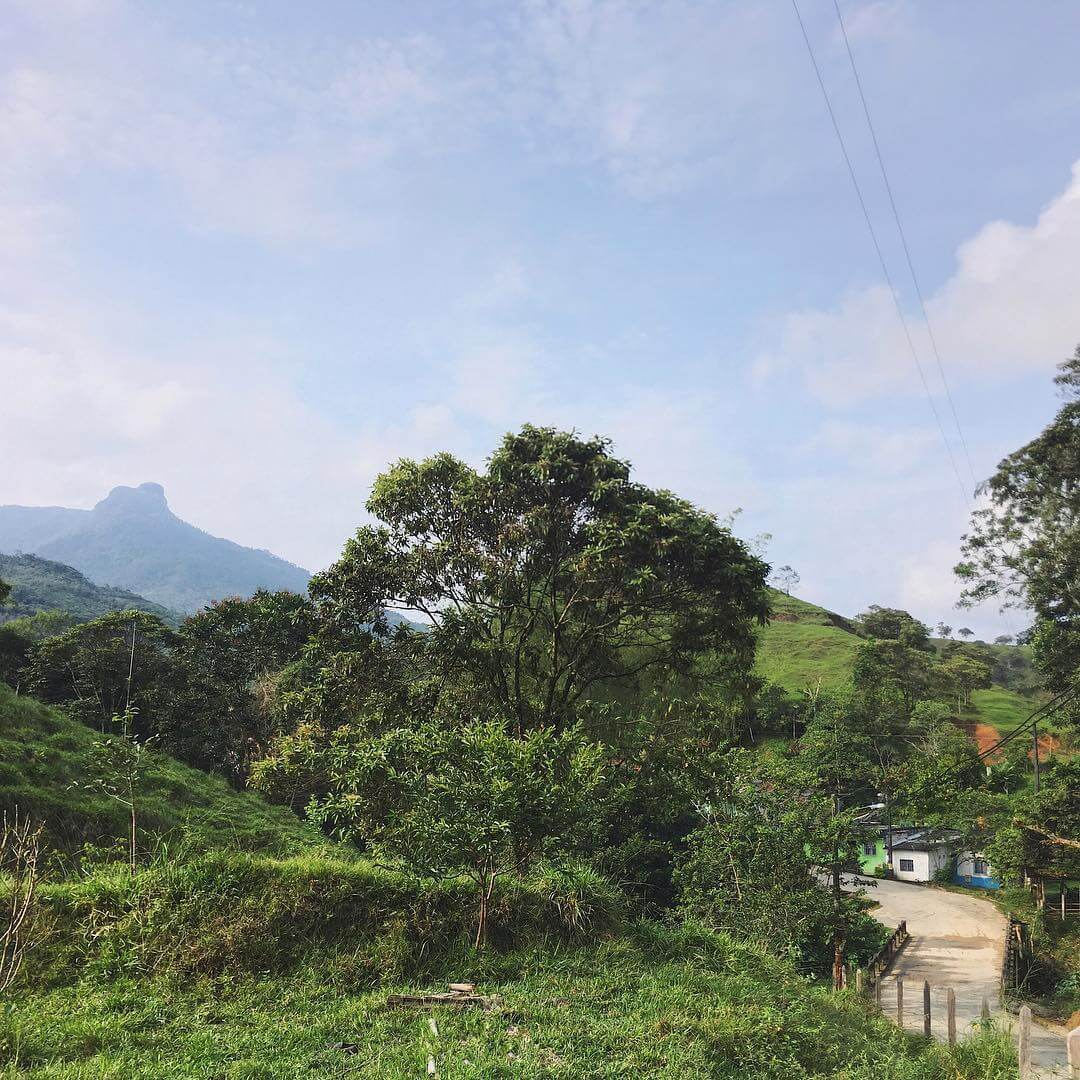 How to get to San Carlos from Medellín