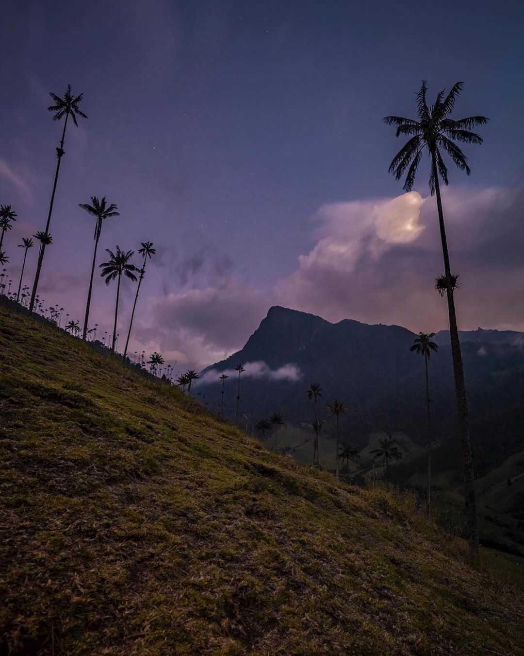 Precio de entrada al Valle del Cocora Colombia