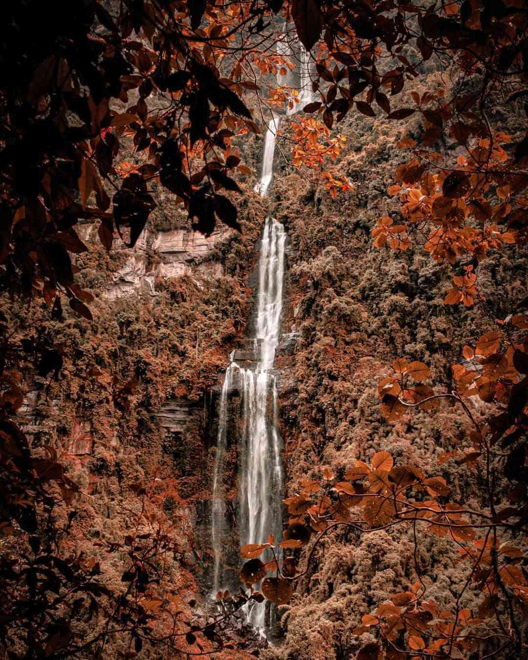Lugares de naturaleza para visitar con poco presupuesto