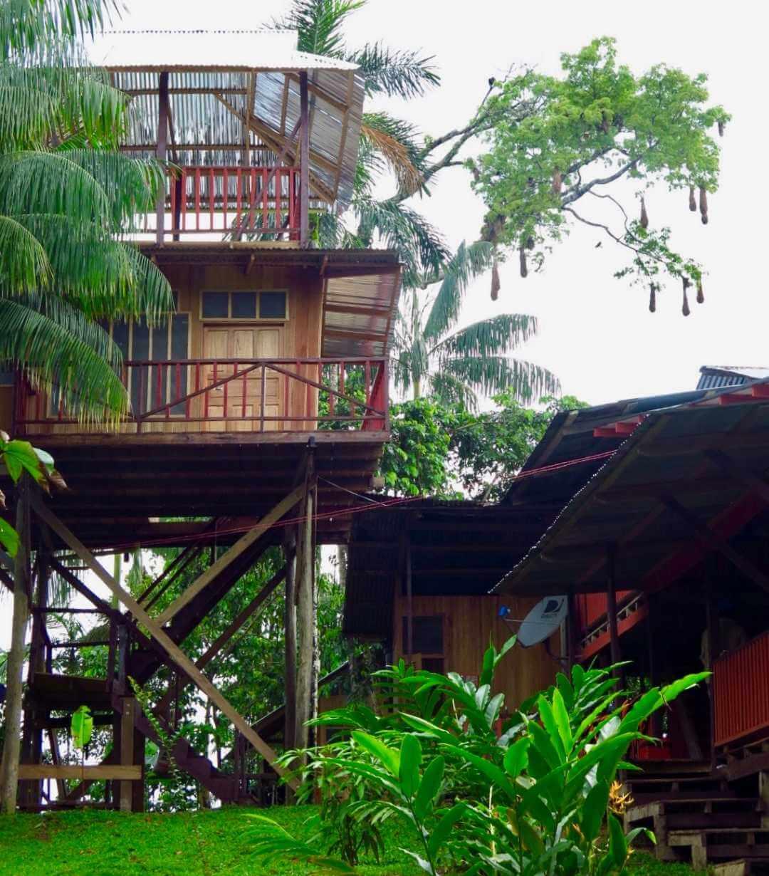 La Ceiba Mocagua Amazonas