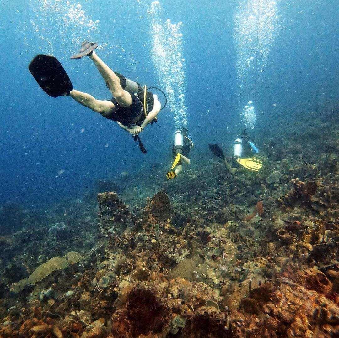 Buceo en Isla Grande Cartagena