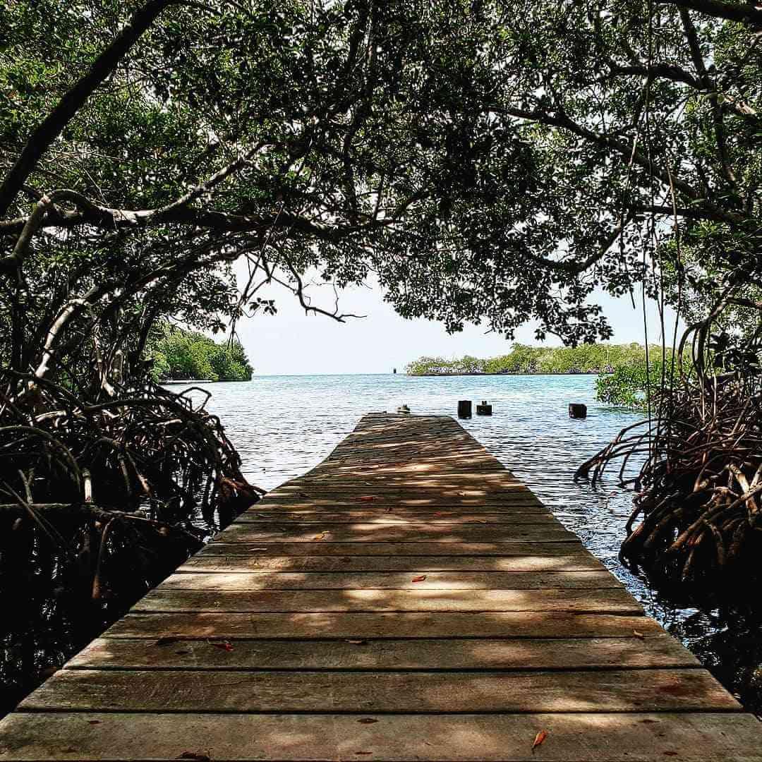 Qué hacer en Isla Grande