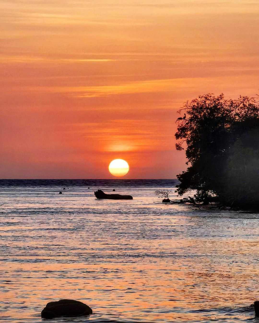 Cómo llegar a Isla Múcura desde Tolú
