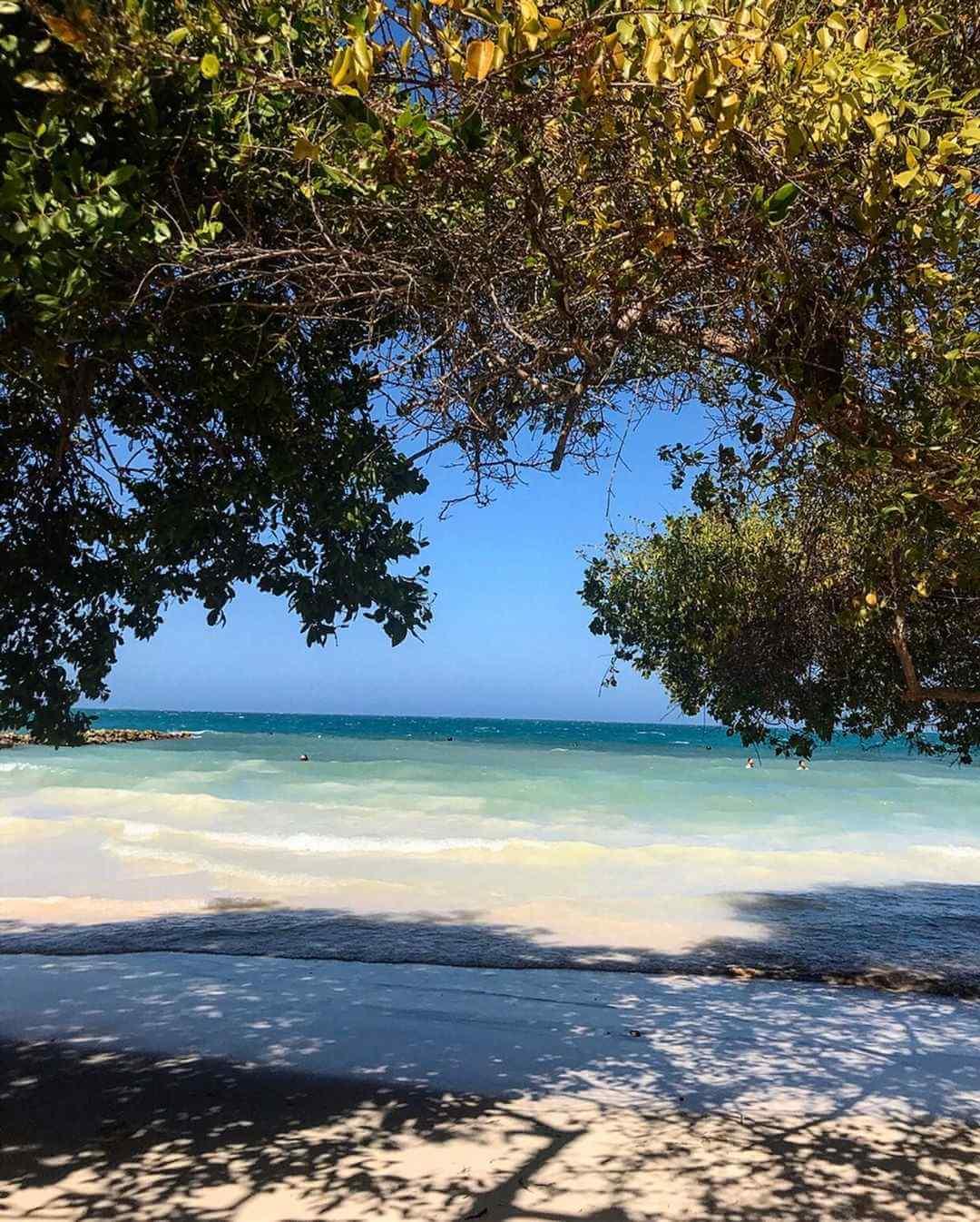 Playas de Isla Múcura