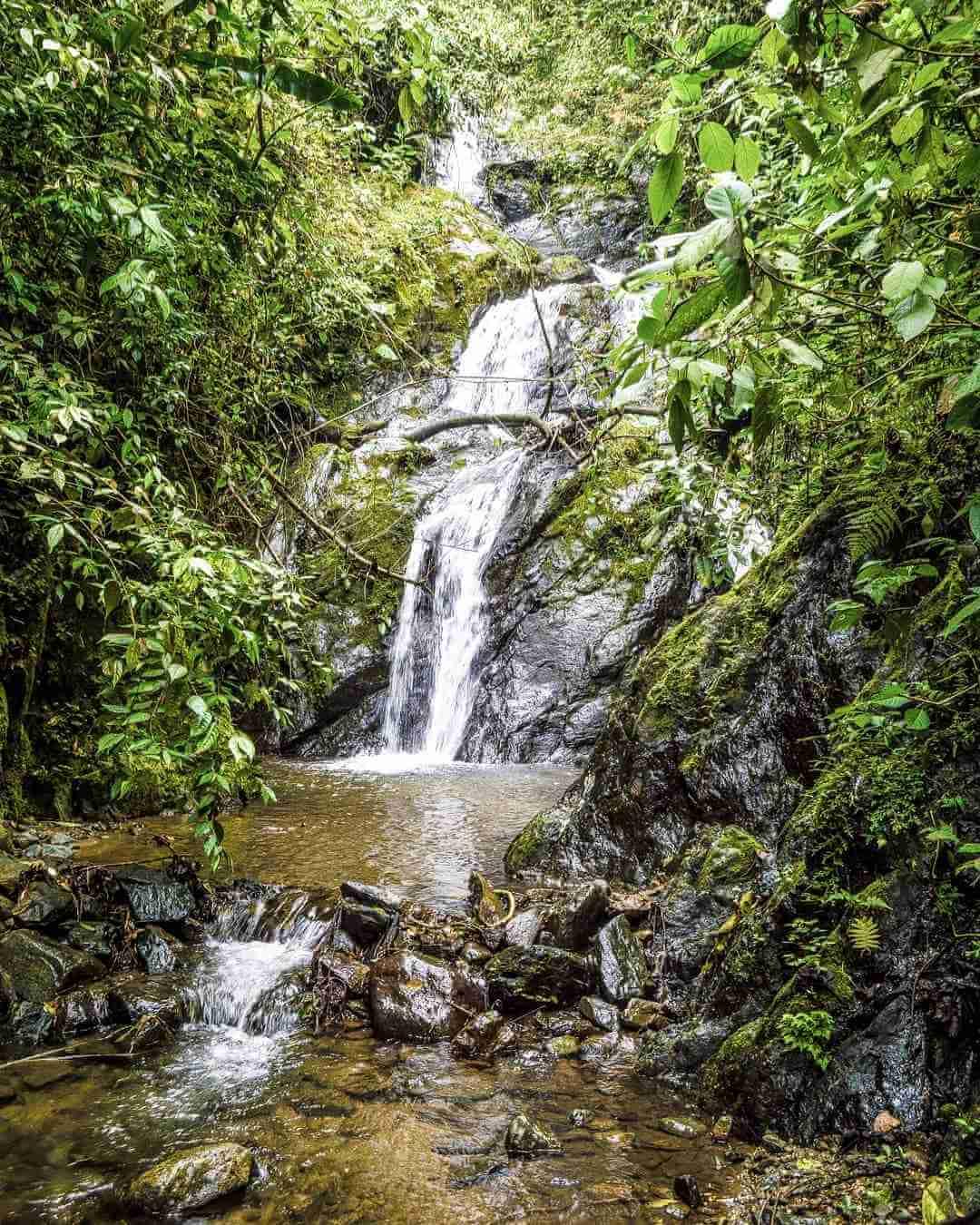 Quebrada La Picota Buenavista