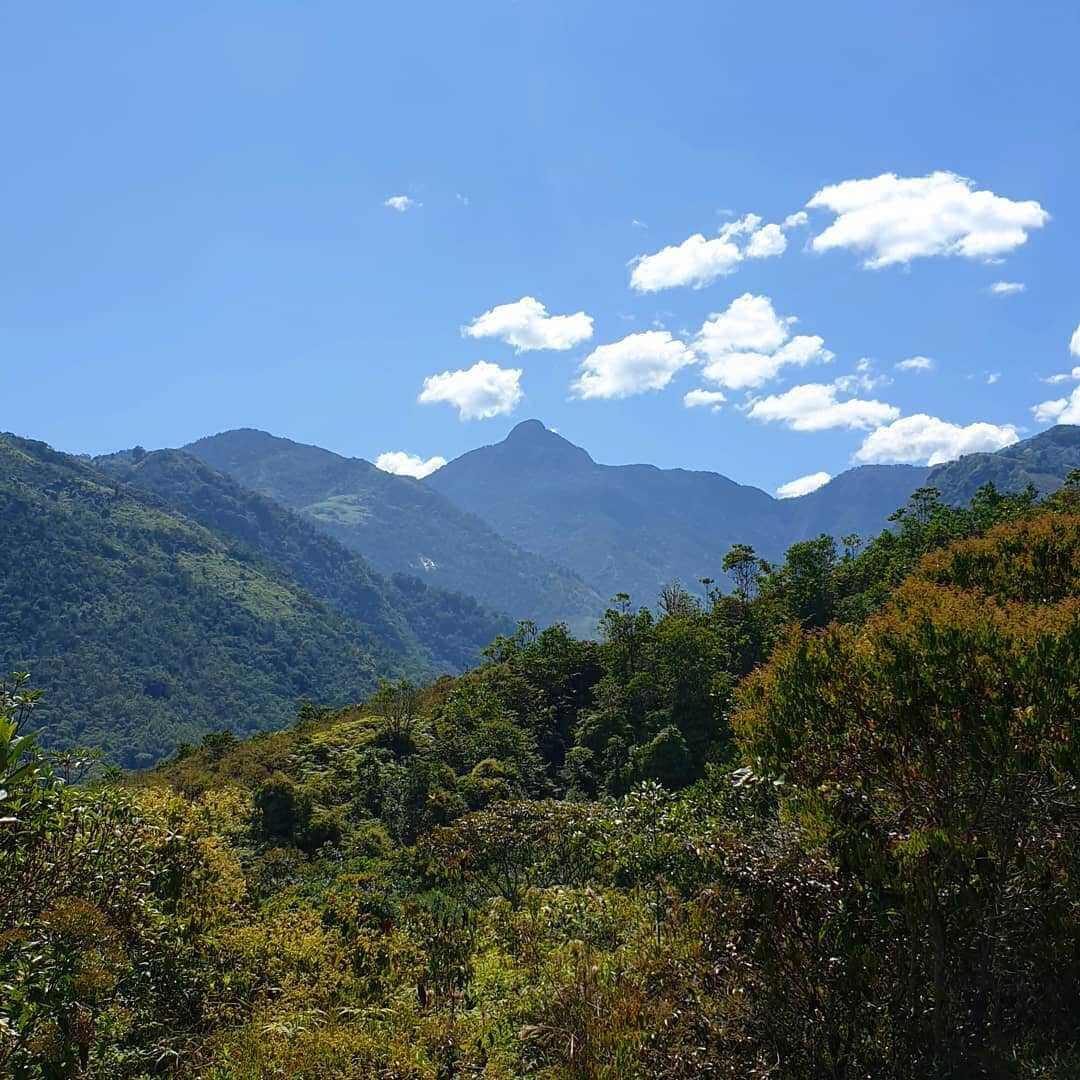 Sendero a Pico de Loro
