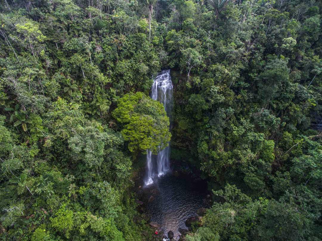Turismo de naturaleza postcovid en Colombia