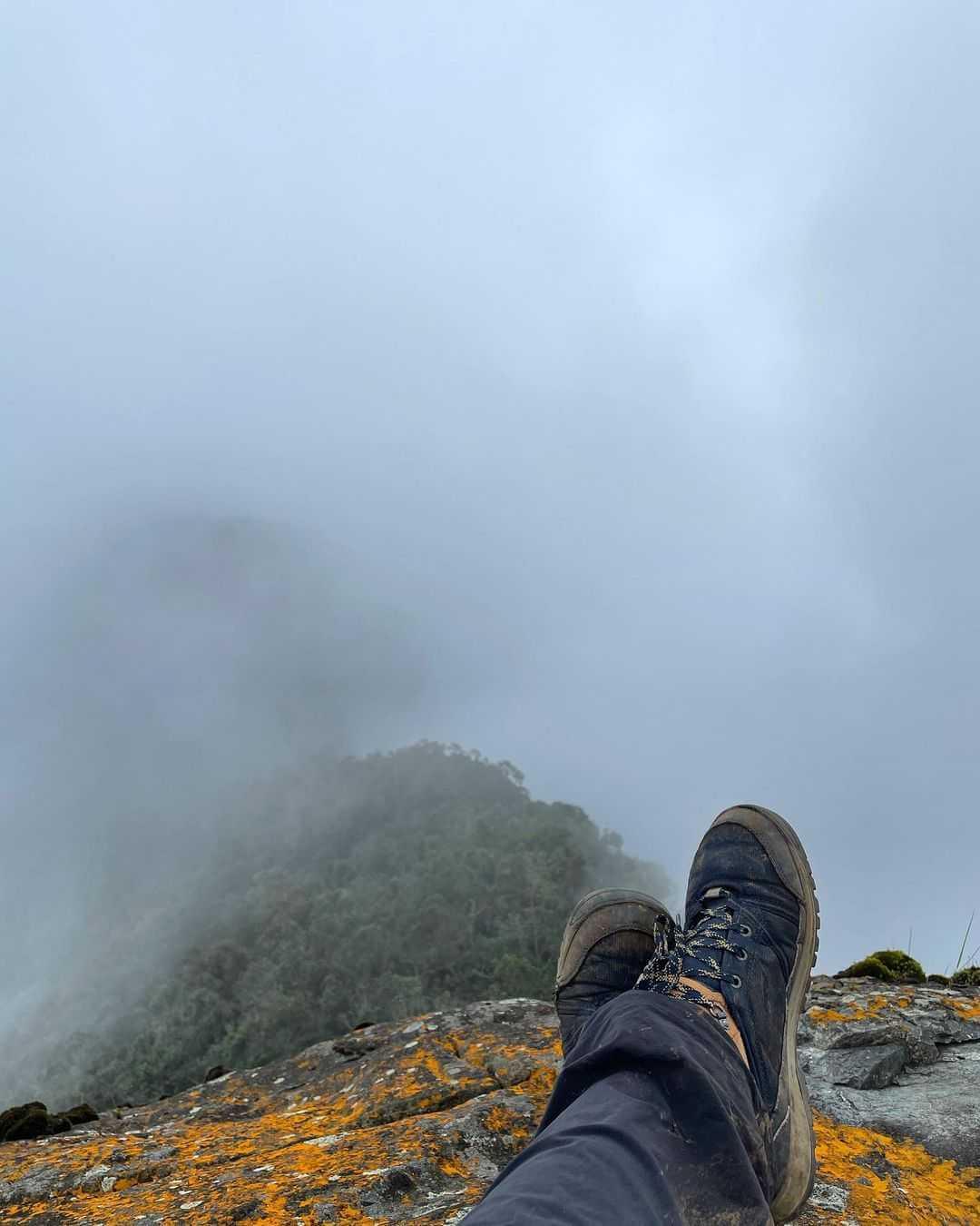 Pico de Loro Guías Farallones de Cali