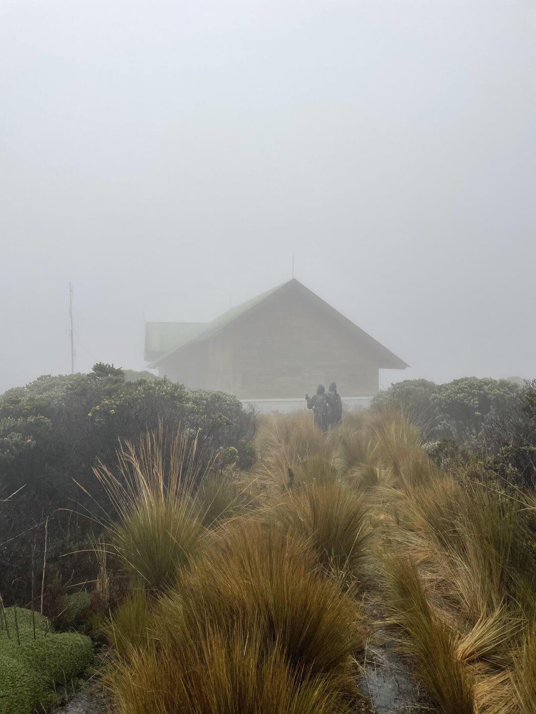 El Cisne Parque Los Nevados Colombia