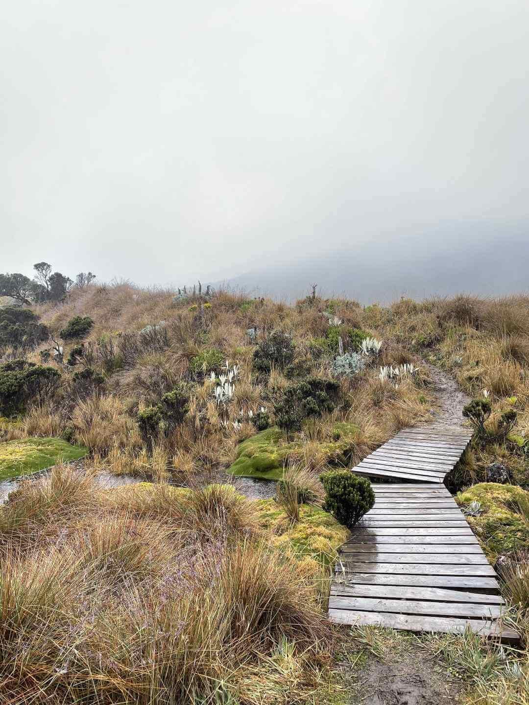 Laguna Verde Encantada Los Nevados