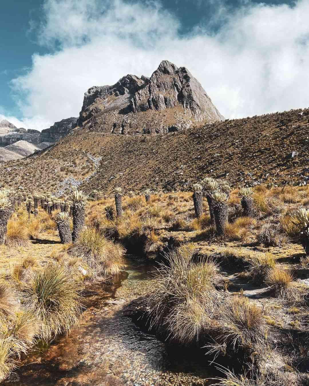 Senderos del Nevado del Cocuy