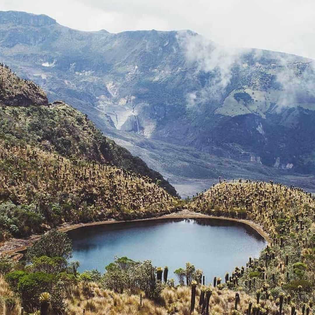 Laguna de Los Nevados