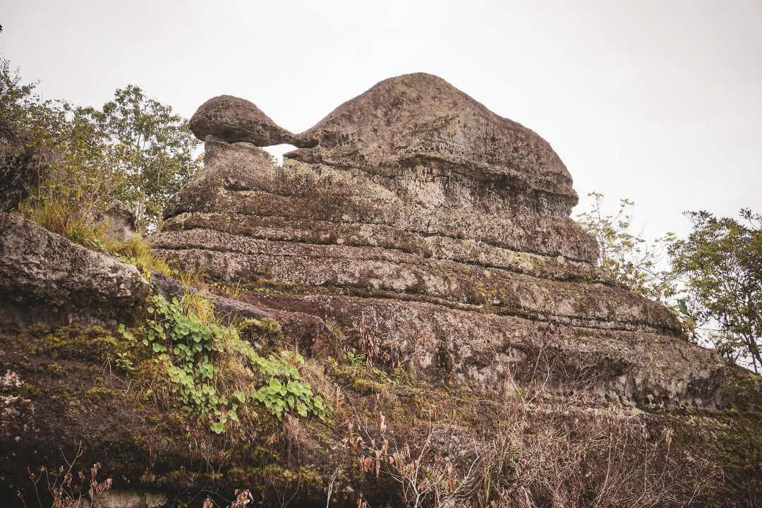 Formaciones rocosas escudo guayanés