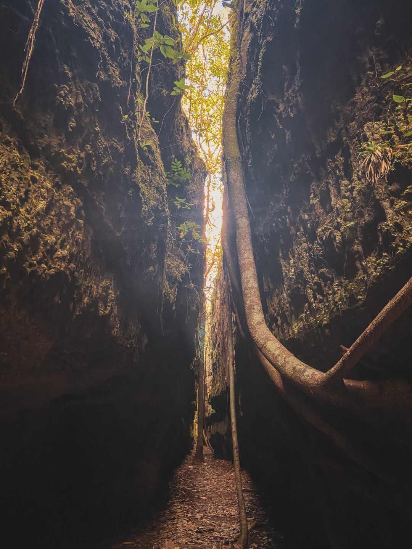 Túneles naturales de Serranía Lindosa