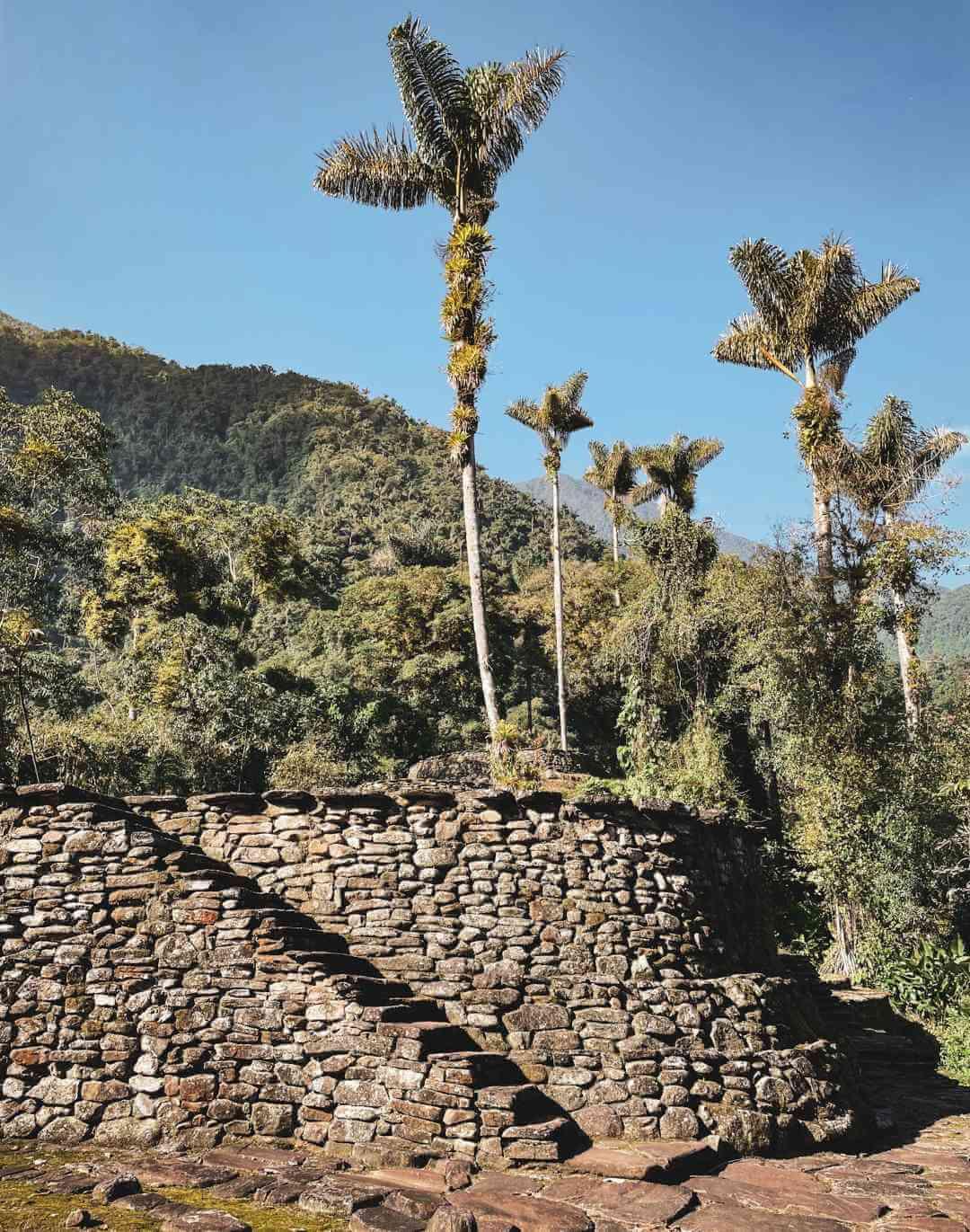 Machu Picchu colombiano